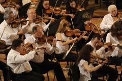 APO violins